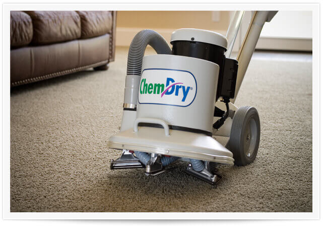 carpet cleaners loveland