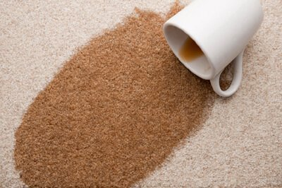 carpet stain removal greeley