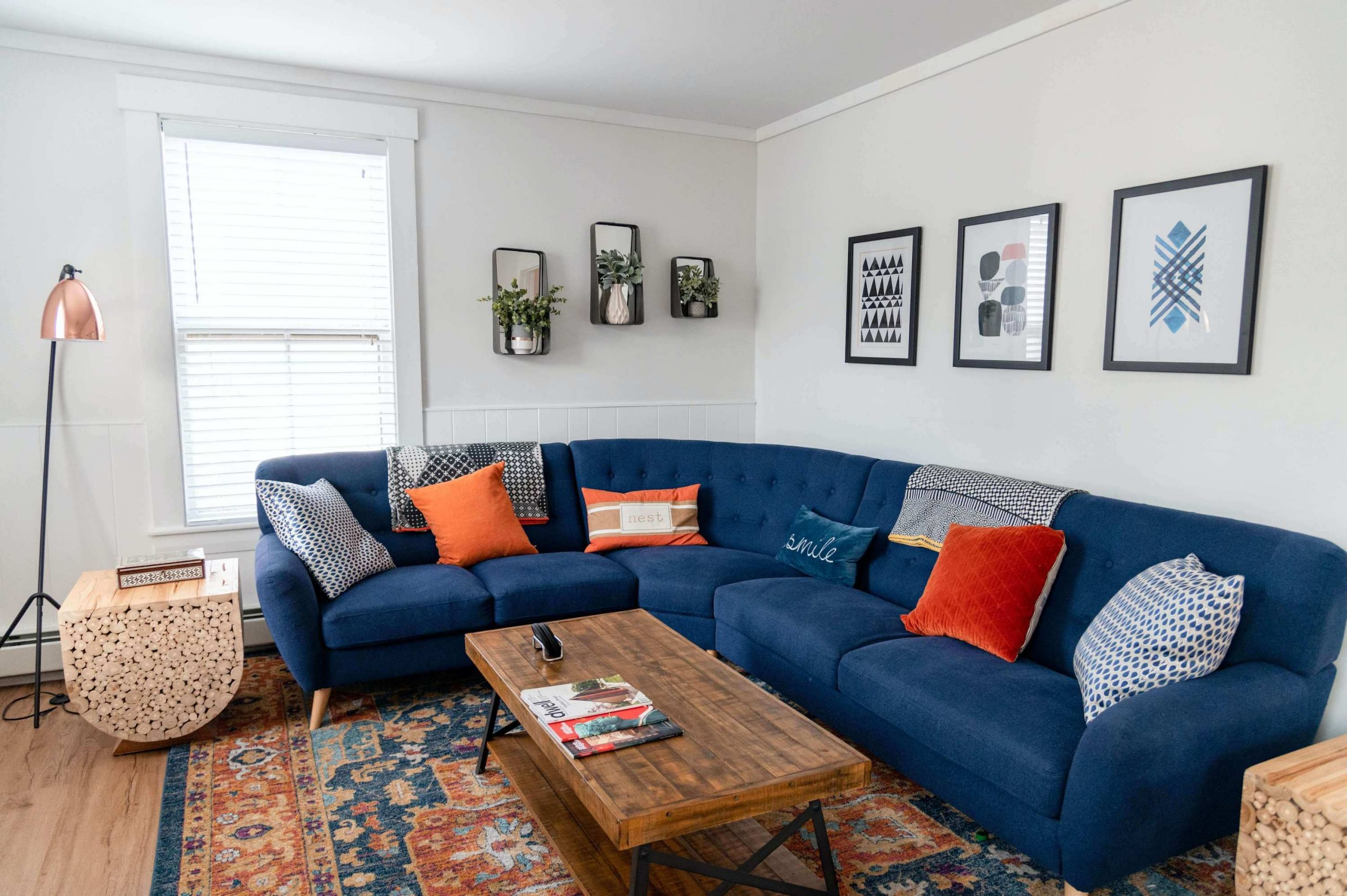 professional upholstery cleaning in fort collins